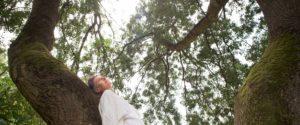 meditation avec sophie ranger